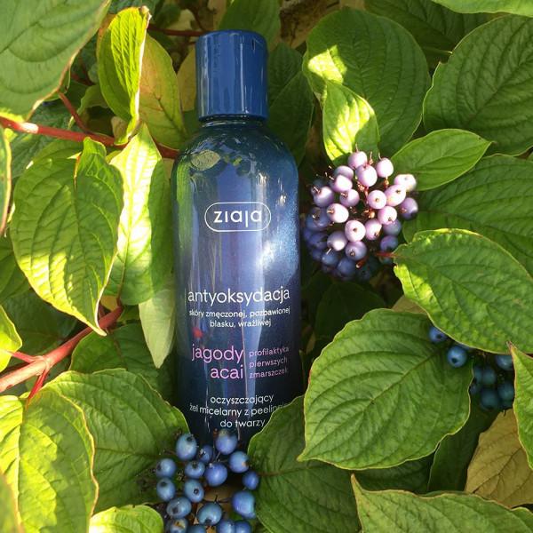 分子酊柔滑修護身體乳液